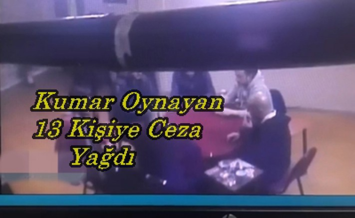 Sinop'ta Kumar Operasyonu: 13 Kİşiye Ceza Yağdı